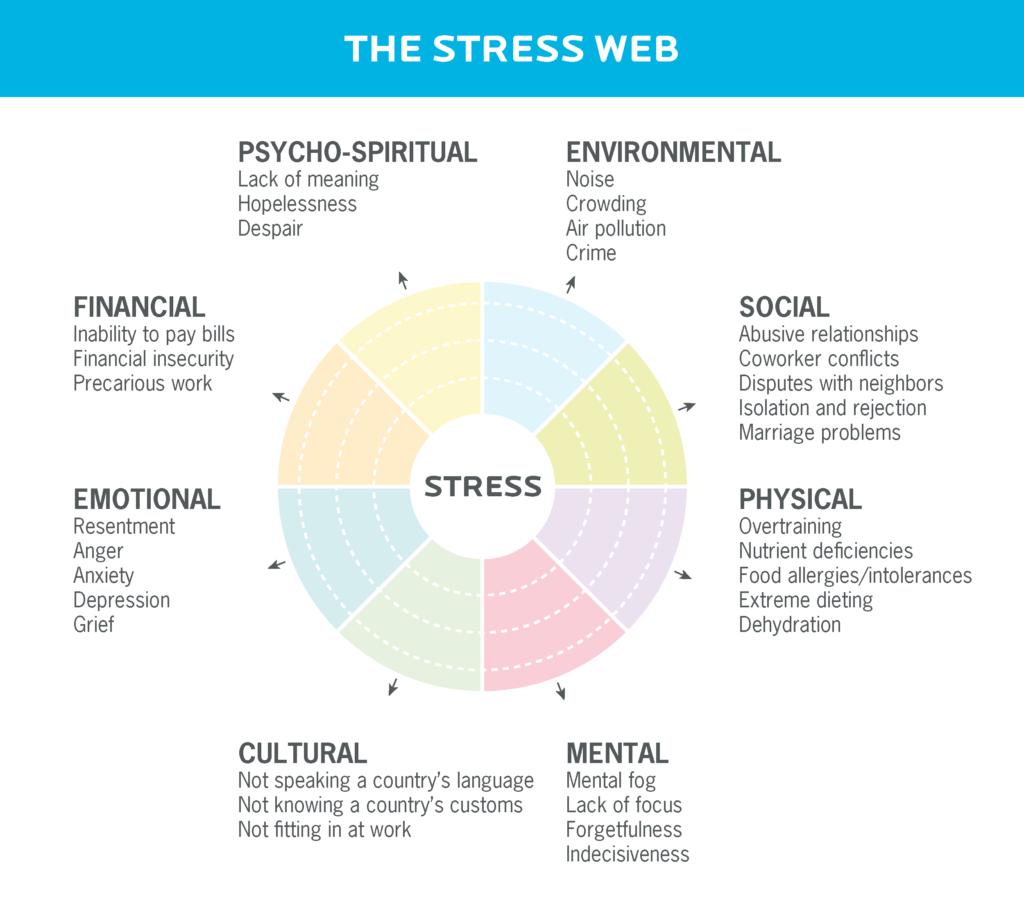 Various types of stress including cultural, mental, physical, social, environmental, psycho-spiritual, financial, emotional.