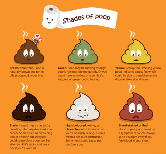 poop the health indicator