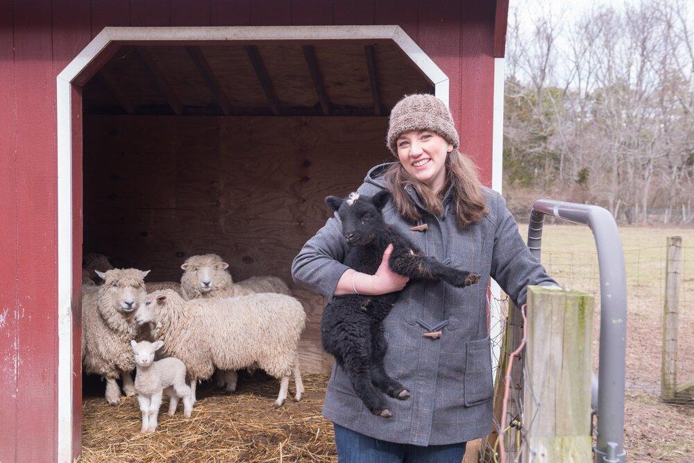 Sheep_Farm_Felt_0075 (1).jpg