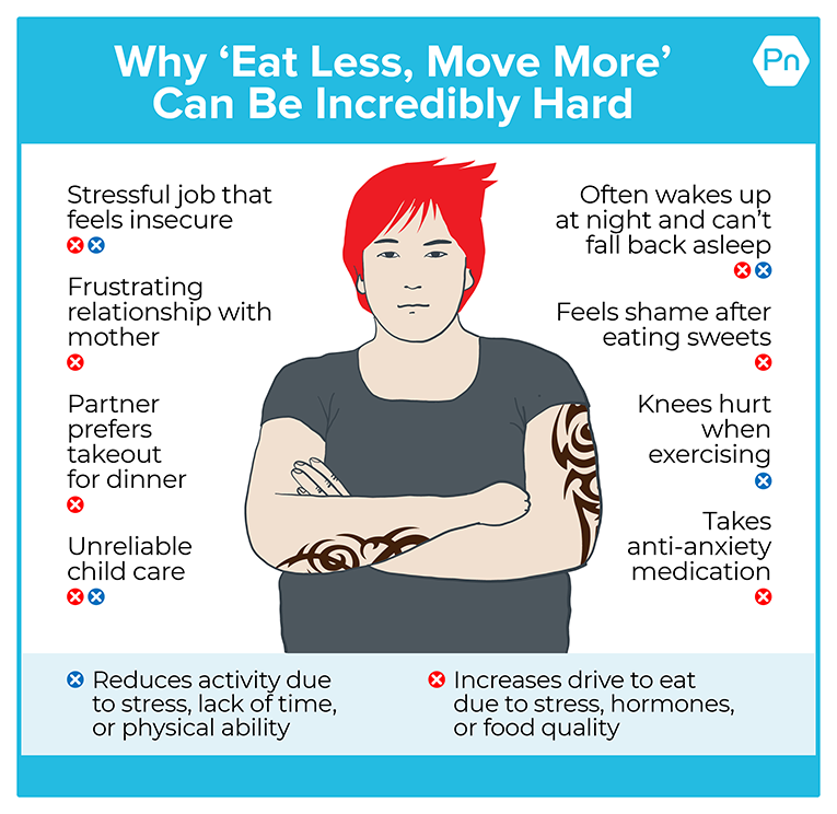 Infographic that shows how many interconnected factors can reduce activity due to stress, lack of time, or physical ability and increases drive to eat due to stress, hormones, or food quality.