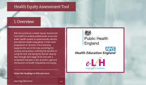 Screenshot of the Health Equity Assessment Tool