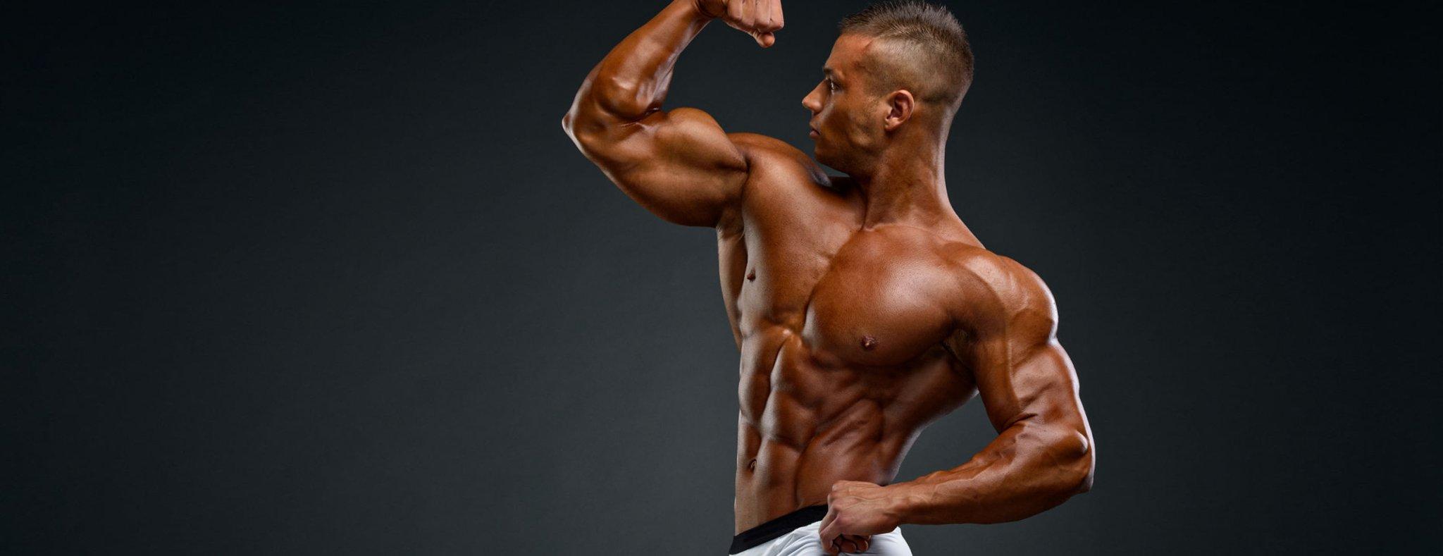 KEYS TO BUILDING BIGGER ARMS