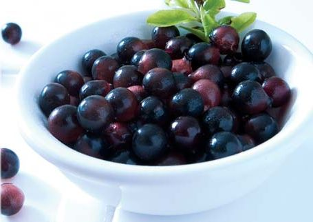 Weight Loss With Acai Berry