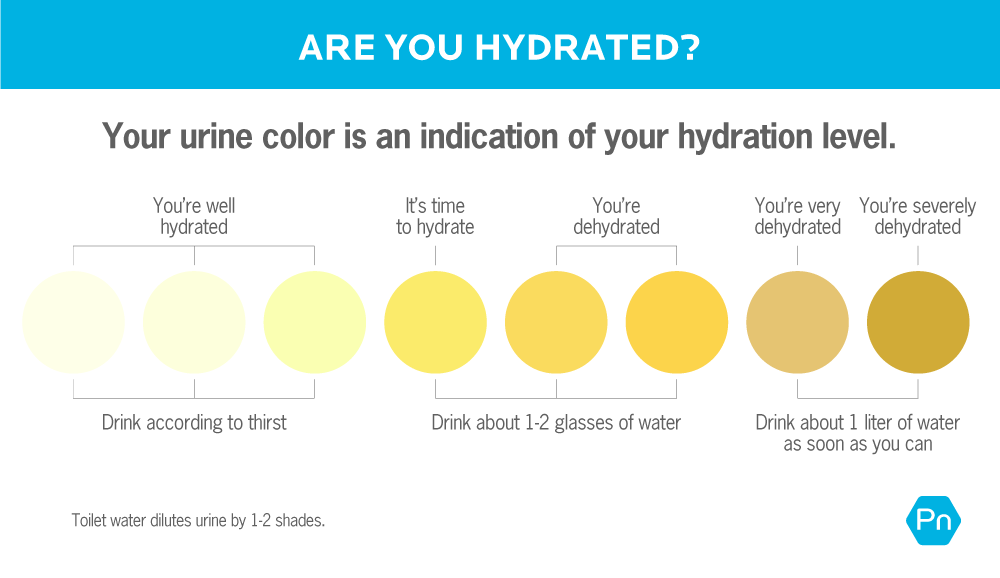This charts shows how to gauge your hydration level, based on the color of your urine. If your urine is almost clear to pale yellow, you're well hydrated, and you can drink according to thirst. If your urine is bright to slightly dark yellow, you need to hydrate with one to two glasses of water. If your urine is dark yellow to brownish yellow, you're very dehydrated, and should drink one liter of water as soon as you can. Please note that toilet water will dilute urine by one to two shades.